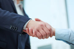 Closeup of male and female handshake in office. Friend welcome, introduction, greet or thanks gesture, product advertisement, partnership approval, arm, strike Stock Photography