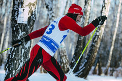 Closeup male skier middle-aged of classic style in winter woods on sports race. Chelyabinsk, Russia -  December 19, 2015: closeup male skier middle-aged of Royalty Free Stock Photo