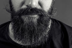 Closeup of a man beard and mustache over gray background Stock Images