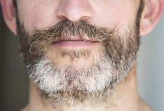Closeup of a man's beard Royalty Free Stock Photos