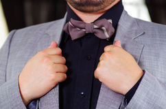 Closeup man's chest area wearing formal suit and bowtie, adjusting jacket collar using hands, men getting dressed. Concept Royalty Free Stock Image