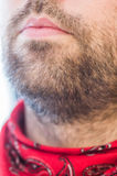 Closeup of man's lips and beard Stock Image