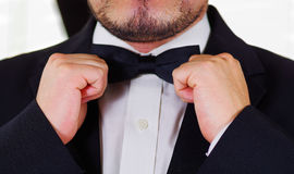 Closeup man's chest wearing white shirt, adjusting bowtie using hands, face partly visible, men getting dressed concept Royalty Free Stock Images