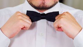 Closeup man's chest wearing white shirt, tying bowtie using hands, face partly visible, men getting dressed concept Stock Photos