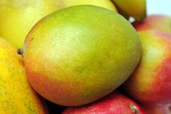 Closeup of mango Stock Image