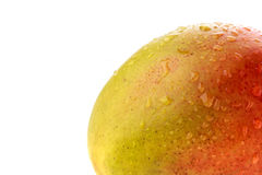 Closeup of mango. Red and yellow skin spotted with water droplets off centre Royalty Free Stock Image