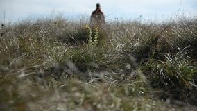 Closeup of a mans`s foot whose silhouette goes beyond the horizon into defocus. Walks across a field of wild grass.  stock footage