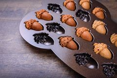 Closeup of Maple Acorn Cakelets, acorn shape cookies in a baking pan, mold. Maple Acorn Cakelets, acorn shape cookies in a baking pan, mold Royalty Free Stock Photography