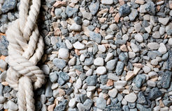 Closeup of marine knot lying on seashore covered by pebbles Royalty Free Stock Image