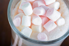 Closeup of marshmallows in hot chocolate Stock Photography