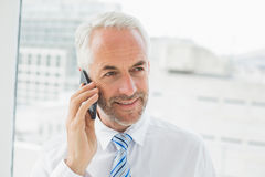 Closeup of a mature businessman using mobile phone Stock Photography