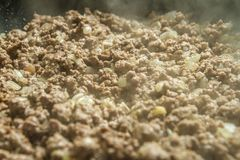 Closeup of minced meat being cooked Royalty Free Stock Images