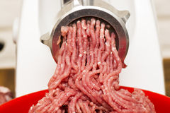 Closeup of minced meat coming out from grinder. Royalty Free Stock Image