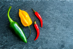 Closeup on mix of peppers on stone substrate Stock Photos