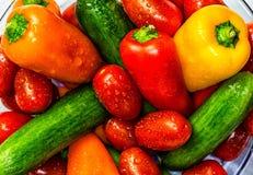 Closeup of Mixed Vegetables. Studio shot Stock Image