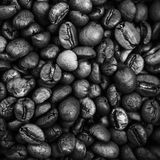 Closeup monochrome photo of roasted coffee beans Royalty Free Stock Photos
