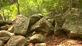 Closeup Motion According to Red Arrows on Boulders in Park stock video