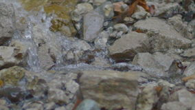 Closeup Mountain River Water Runs Over Rocks stock video footage