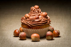 Closeup muffin with chocolate cream and hazelnuts Stock Image
