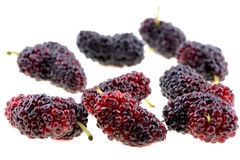 Closeup of mulberry Royalty Free Stock Photos