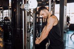 Closeup of a muscular young man lifting weights. Image royalty free stock image