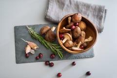 Closeup on mushrooms lingonberries and rosmarinus Stock Photography