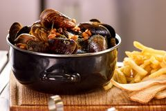Closeup mussels in saucepan. Mussels and side dish stock images