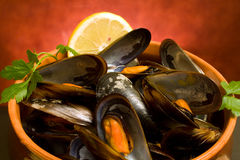 Closeup Of Mussels Soup Stock Photography