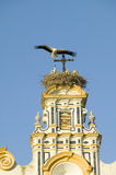 Closeup of nesting European storks on white cathedral tower with beautiful sunlight in village of Southern Spain off highway A49 w Stock Images