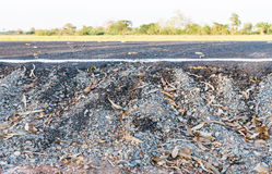 Closeup of new asphalt road with side ground view Royalty Free Stock Photography