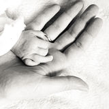 Closeup newborn baby holding his mothers finger. Parenting and love concept. Closeup newborn baby holding his mothers finger. Square format, black white photo Royalty Free Stock Photography
