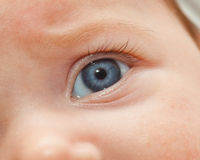 Closeup of newborn blue eye. Royalty Free Stock Photography