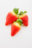 Closeup of not fully ripe strawberries. Over white background Stock Photo