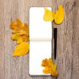Closeup of notebook and pen, decorated with autumn yellow leaves and branches. Top view, flat lay Stock Photo