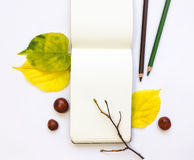 Closeup of notebook and pencil, decorated with autumn yellow leaves and branches. Top view, flat lay Stock Photos