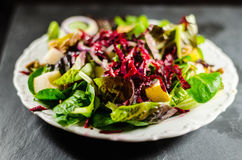 Closeup Of Nutritious Salad In Plate Royalty Free Stock Image
