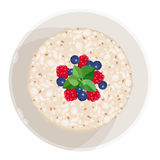 Closeup of oatmeal with fruits isolated illustration on white Royalty Free Stock Image