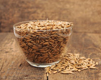 Closeup oats heaped in a glass cup Royalty Free Stock Images