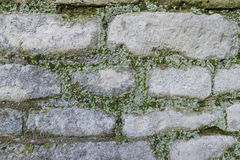 Free Closeup Of An Historic Brick Wall Royalty Free Stock Image - 35283516