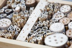 Free Closeup Of An Insect Hotel Made Of Reed And Drilled Holes In Wood Of Different Diameter To Suit All Kind Of Insects Royalty Free Stock Photo - 144213895