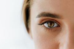 Free Closeup Of Beautiful Girl Eye And Eyebrow With Natural Makeup Stock Photo - 83940090