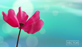 Closeup Of Flower On Bokeh Blue Background. Beautiful Template For Cards Or Banners Design. Vector Stock Photo