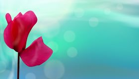 Closeup Of Flower On Bokeh Blue Background. Beautiful Template For Or Banners Or Cards Design. Vector Stock Images
