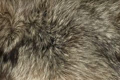 Closeup Of Fox Fur Royalty Free Stock Photos