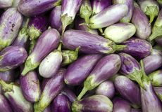 Free Closeup Of Fresh Brinjal, Eggplant Stock Photos - 119703333