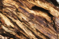 Free Closeup Of Multi Layered Rock Formation Stock Photo - 165950840