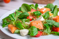 Free Closeup Of Salmon With Vegetables And Lettuce Royalty Free Stock Photos - 49667818