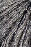 Closeup of old dried lava flow Hawaii Royalty Free Stock Images
