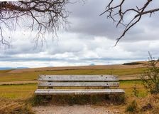 Closeup of an old and  empty wooden bench. In the middle of cereal fields Royalty Free Stock Images