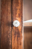 Closeup of old fashioned door knob Stock Images